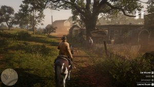 Red Dead Redemption 2 скриншот 75